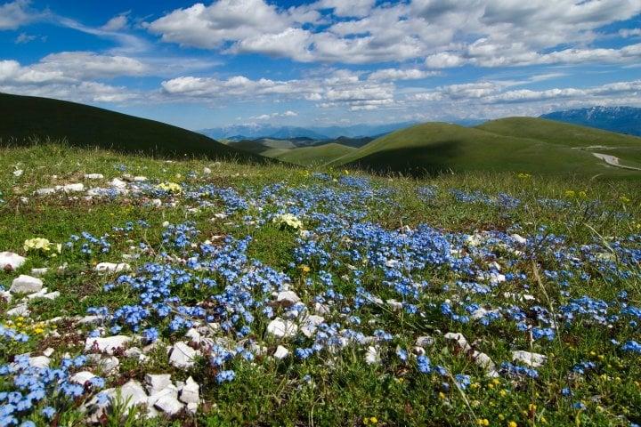 Abruzzo Holidays | Holidays in Abruzzo Italy | Abruzzo, Italy Vacations