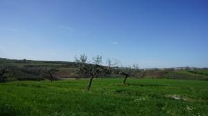 pianella-italy-pianella-abruzzo-pianella-pescara-32-1024x574